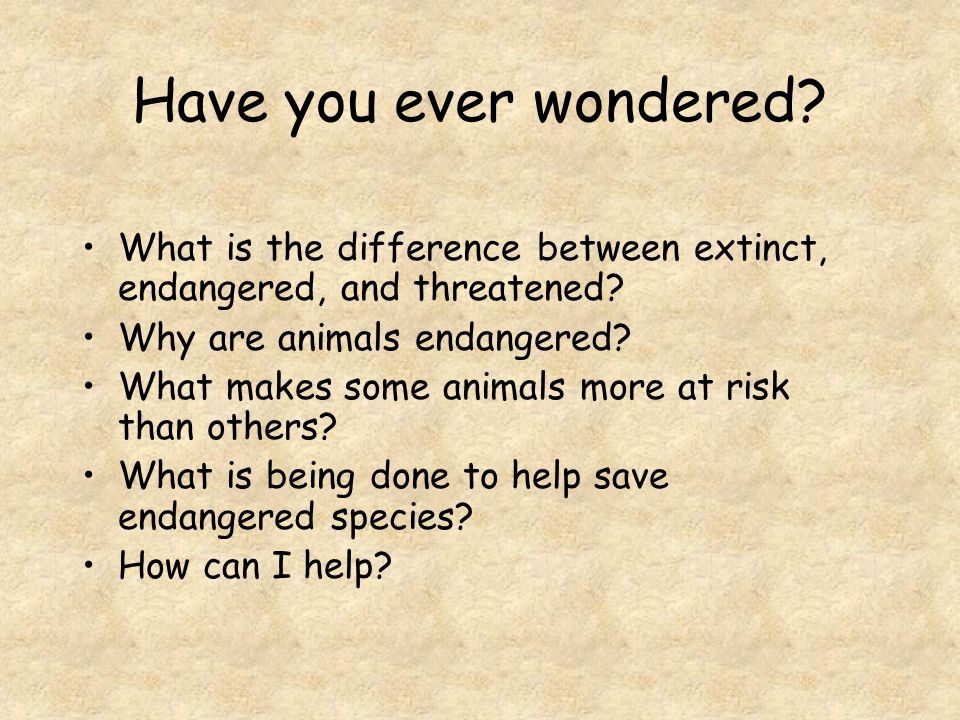 Have you ever wondered What is the difference between extinct, endangered, and threatened Why are animals endangered