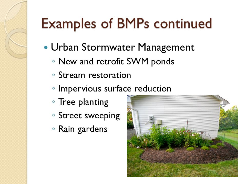 Examples of BMPs continued