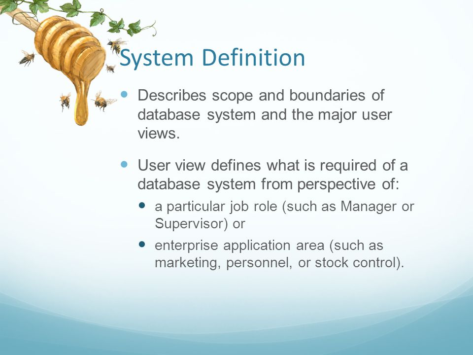 System Definition Describes scope and boundaries of database system and the major user views.