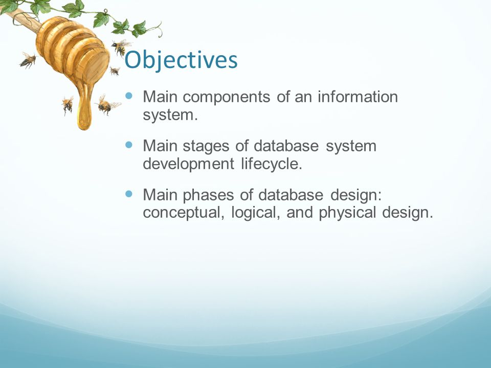 Objectives Main components of an information system.