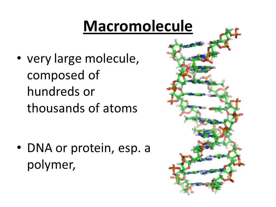 Macromolecule very large molecule, composed of hundreds or thousands of atoms.