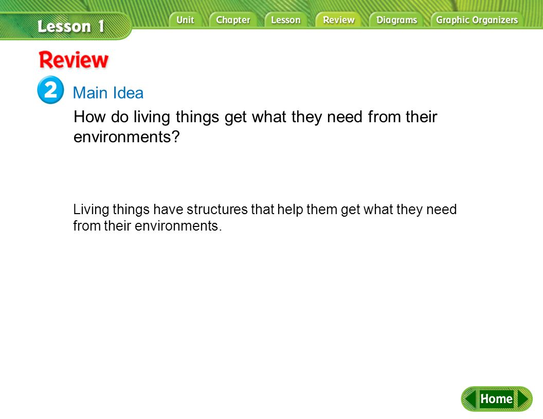 How do living things get what they need from their environments