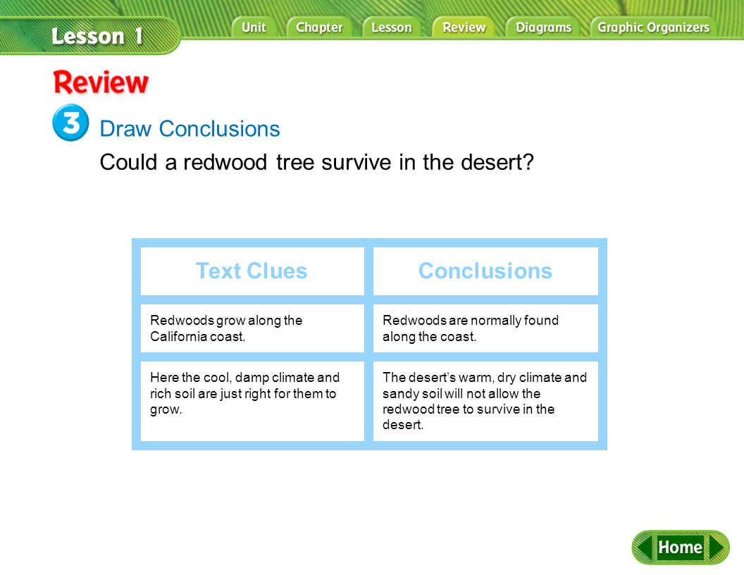 Text Clues Conclusions