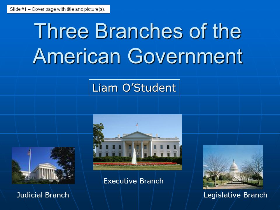 Three Branches of the American Government
