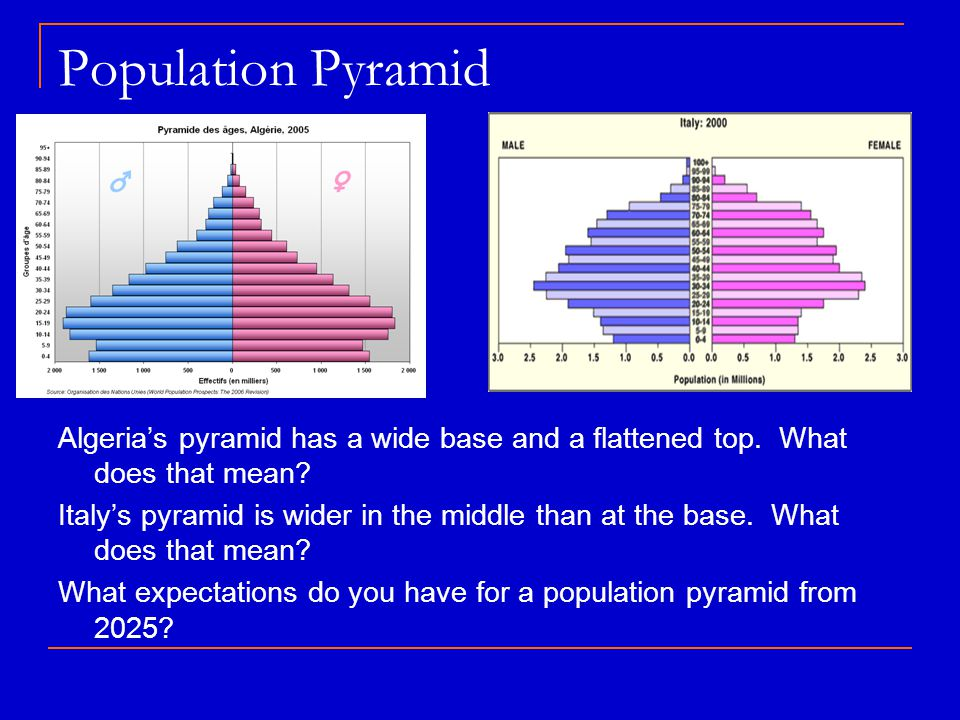 Population Pyramid Algeria's pyramid has a wide base and a flattened top. What does that mean