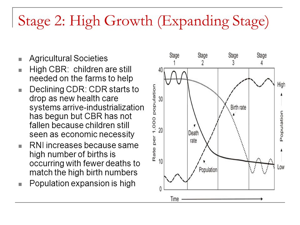 Stage 2: High Growth (Expanding Stage)