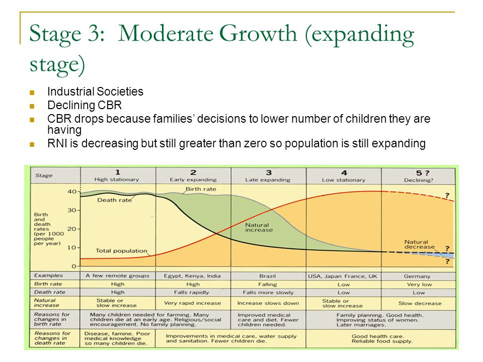 Stage 3: Moderate Growth (expanding stage)