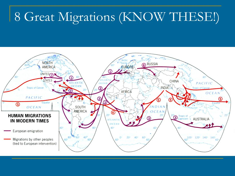 8 Great Migrations (KNOW THESE!)