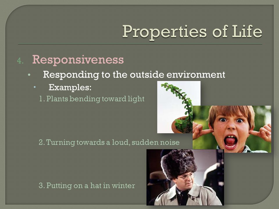 Properties of Life Responsiveness