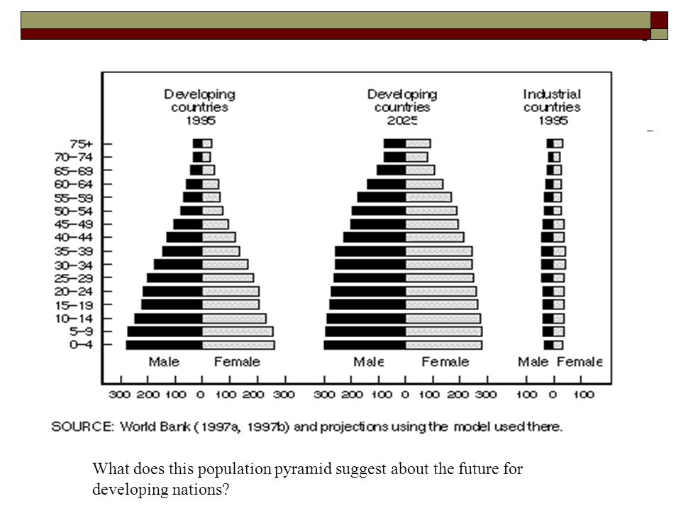 What does this population pyramid suggest about the future for developing nations