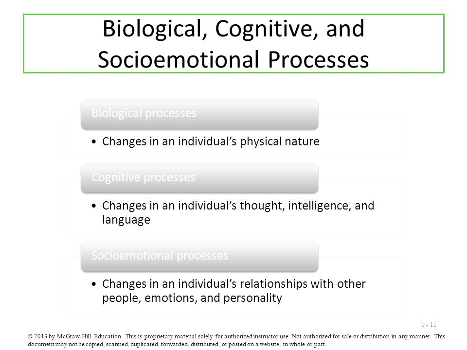 Biological, Cognitive, and Socioemotional Processes