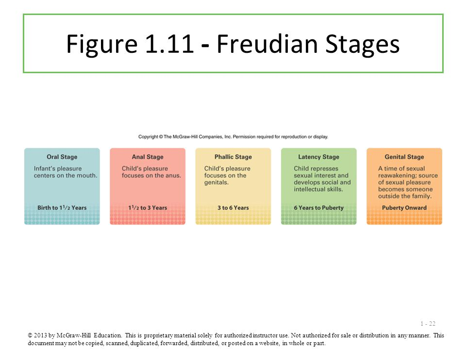 Figure 1.11 - Freudian Stages