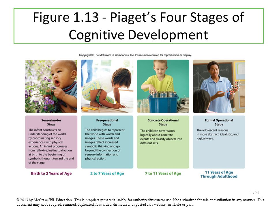 Figure 1.13 - Piaget's Four Stages of Cognitive Development
