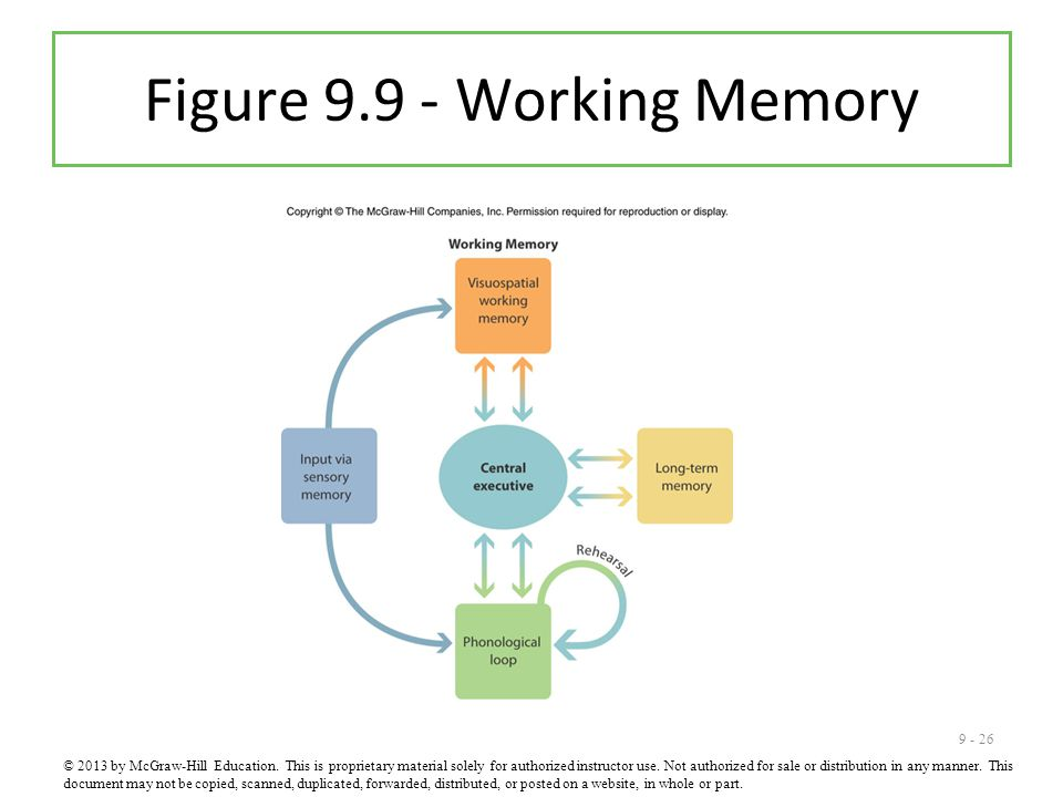 Figure 9.9 - Working Memory