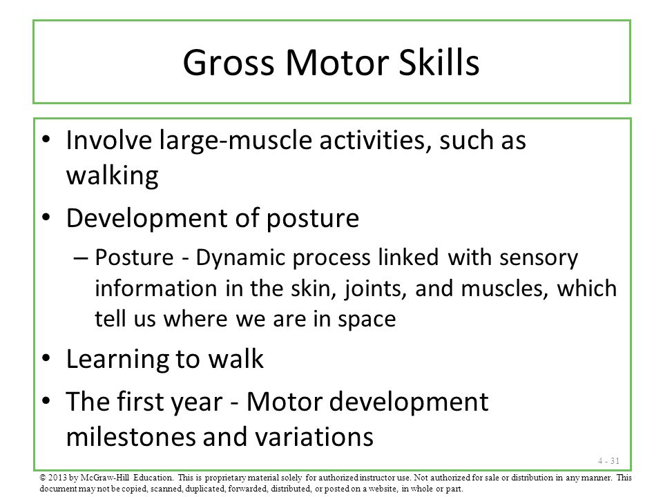 Gross Motor Skills Involve large-muscle activities, such as walking