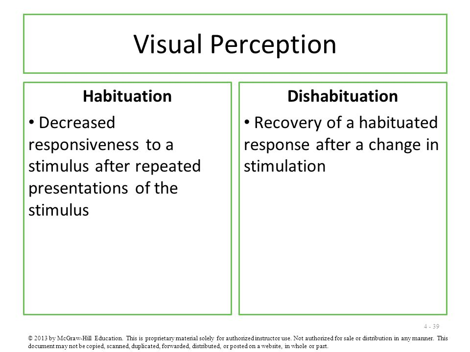 Visual Perception Habituation