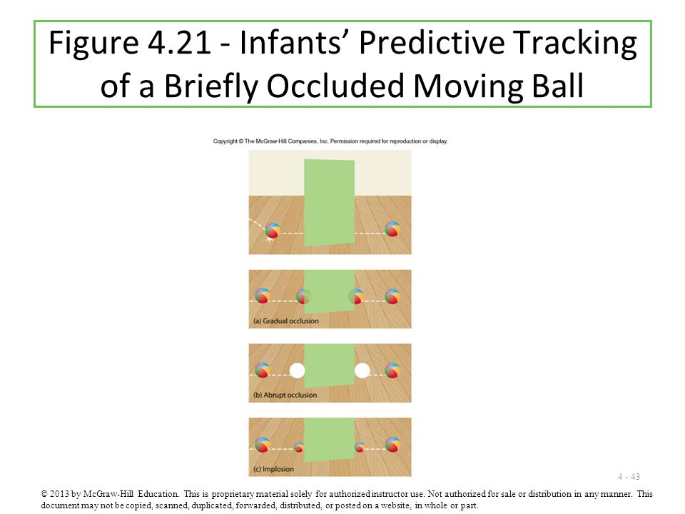 Figure 4.21 - Infants' Predictive Tracking of a Briefly Occluded Moving Ball