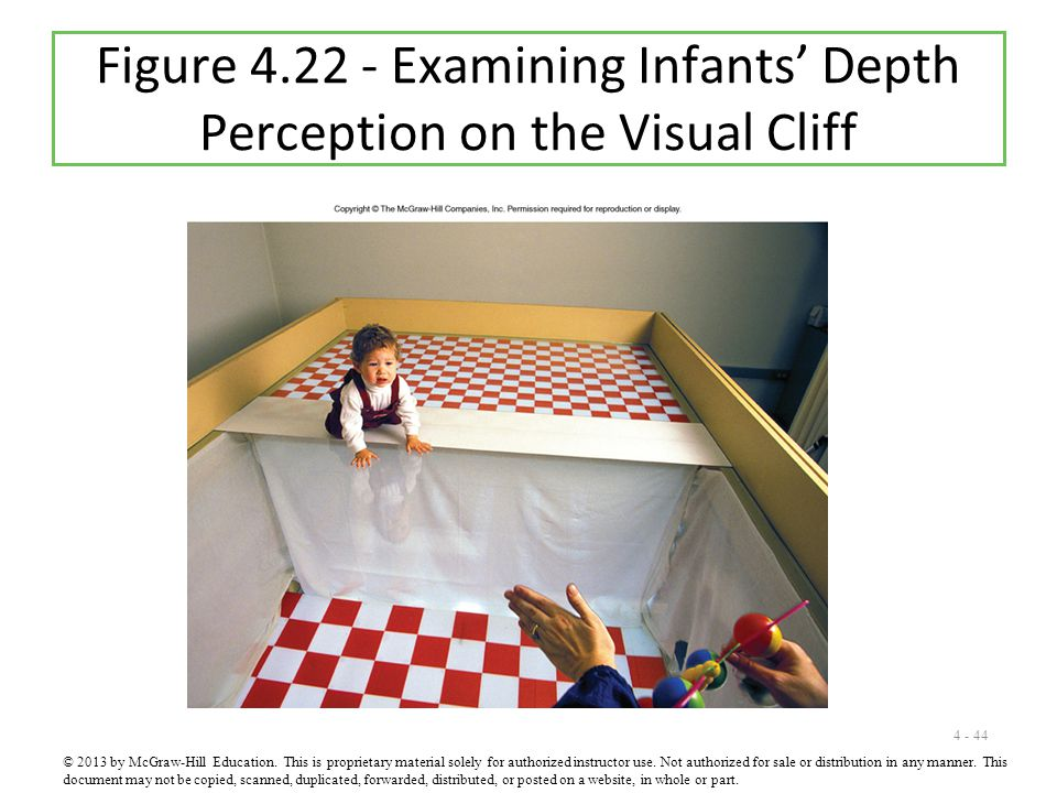Figure 4.22 - Examining Infants' Depth Perception on the Visual Cliff