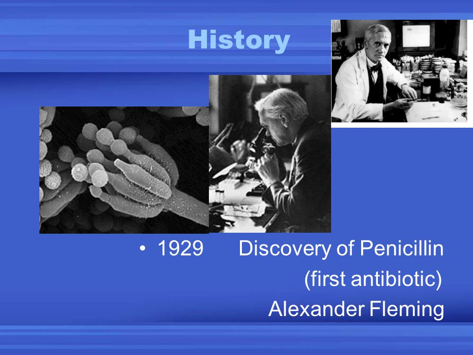 History 1929 Discovery of Penicillin (first antibiotic)