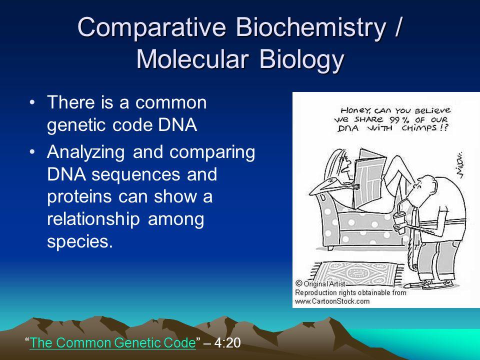 Comparative Biochemistry / Molecular Biology