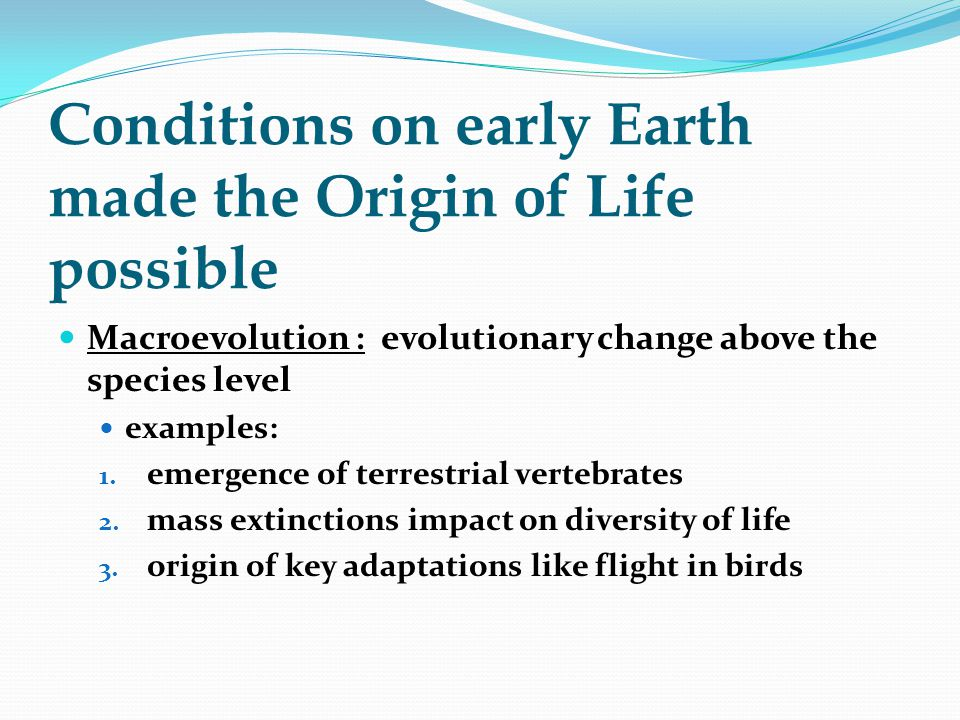 Conditions on early Earth made the Origin of Life possible