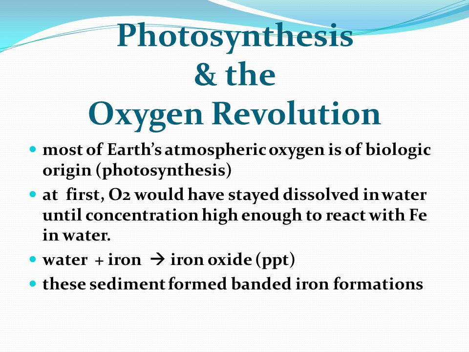 Photosynthesis & the Oxygen Revolution