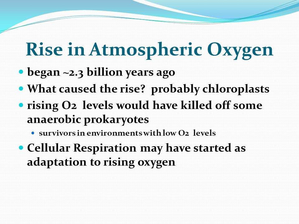 Rise in Atmospheric Oxygen