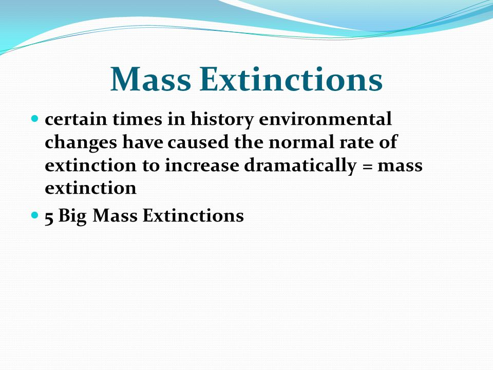 Mass Extinctions certain times in history environmental changes have caused the normal rate of extinction to increase dramatically = mass extinction.