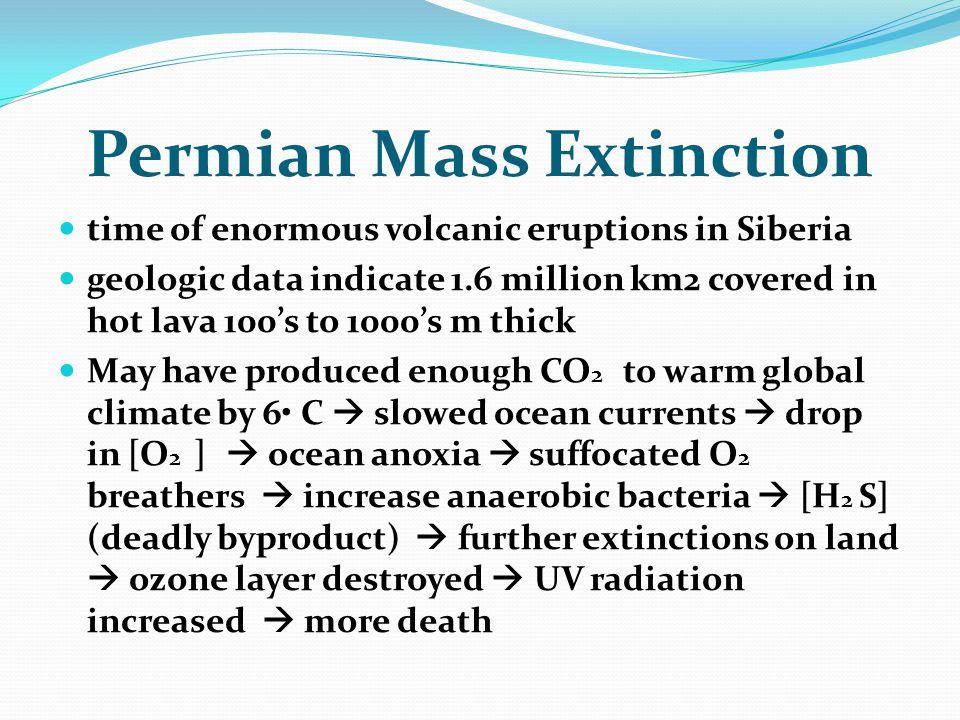 Permian Mass Extinction