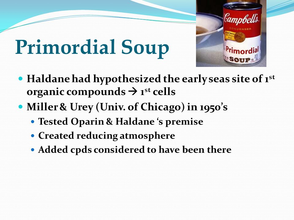 Primordial Soup Haldane had hypothesized the early seas site of 1st organic compounds  1st cells. Miller & Urey (Univ. of Chicago) in 1950's.