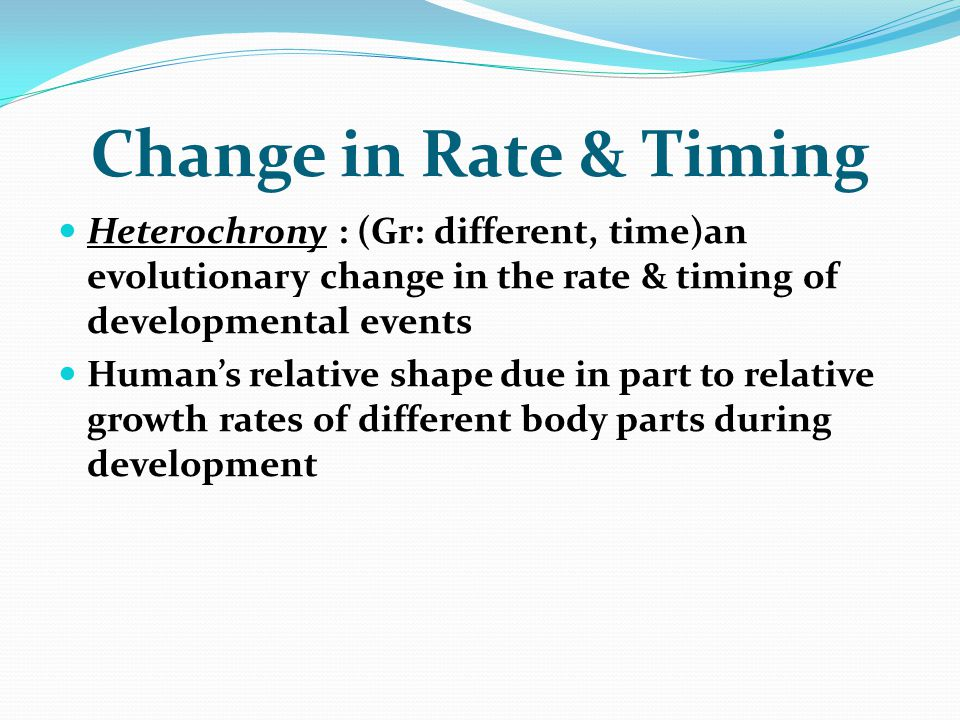 Change in Rate & Timing Heterochrony : (Gr: different, time)an evolutionary change in the rate & timing of developmental events.