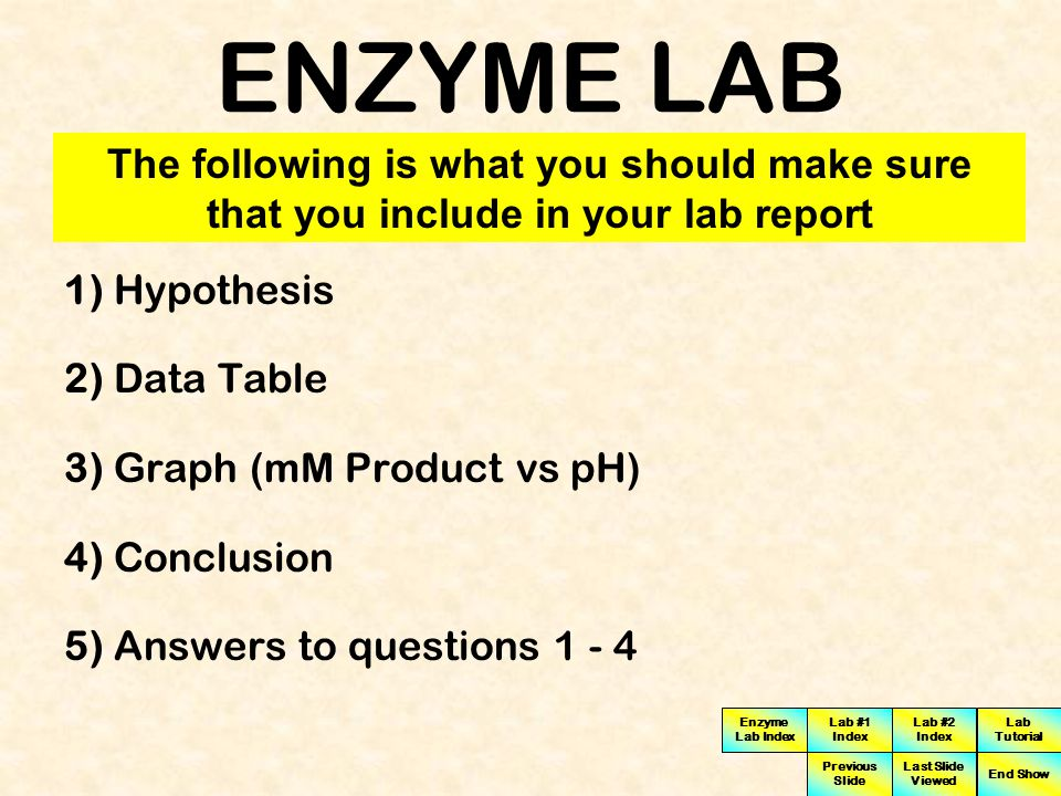 ENZYME LAB The following is what you should make sure that you include in your lab report. 1) Hypothesis.