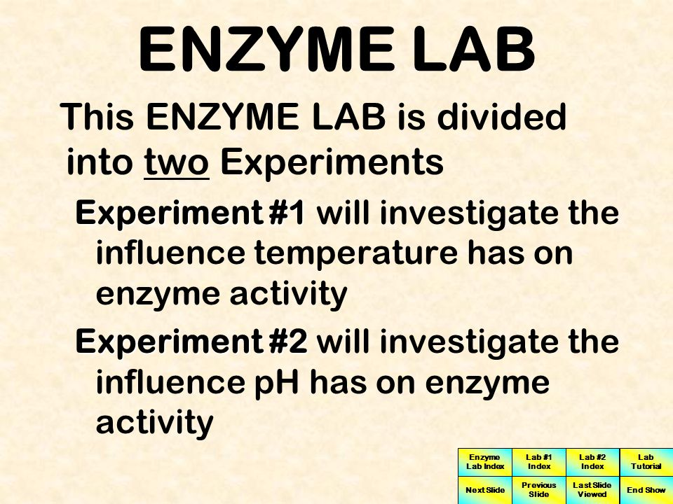 ENZYME LAB This ENZYME LAB is divided into two Experiments