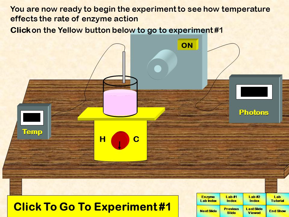 Click To Go To Experiment #1