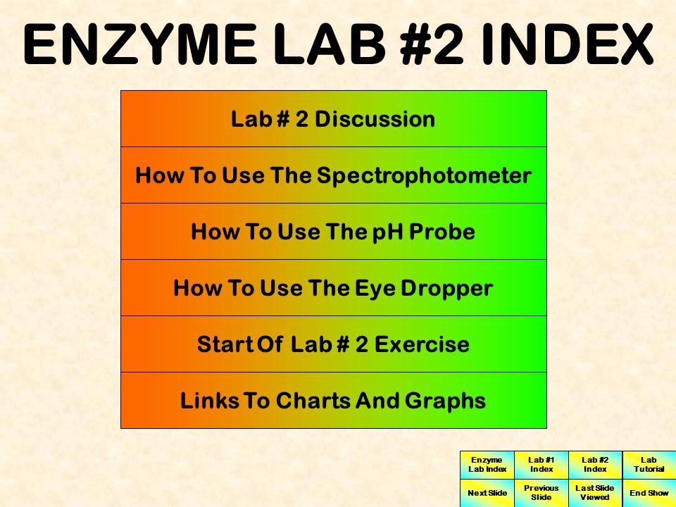ENZYME LAB #2 INDEX Lab # 2 Discussion