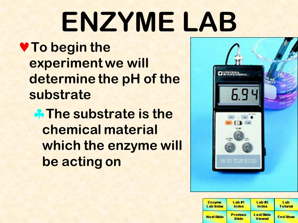 ENZYME LAB To begin the experiment we will determine the pH of the substrate.