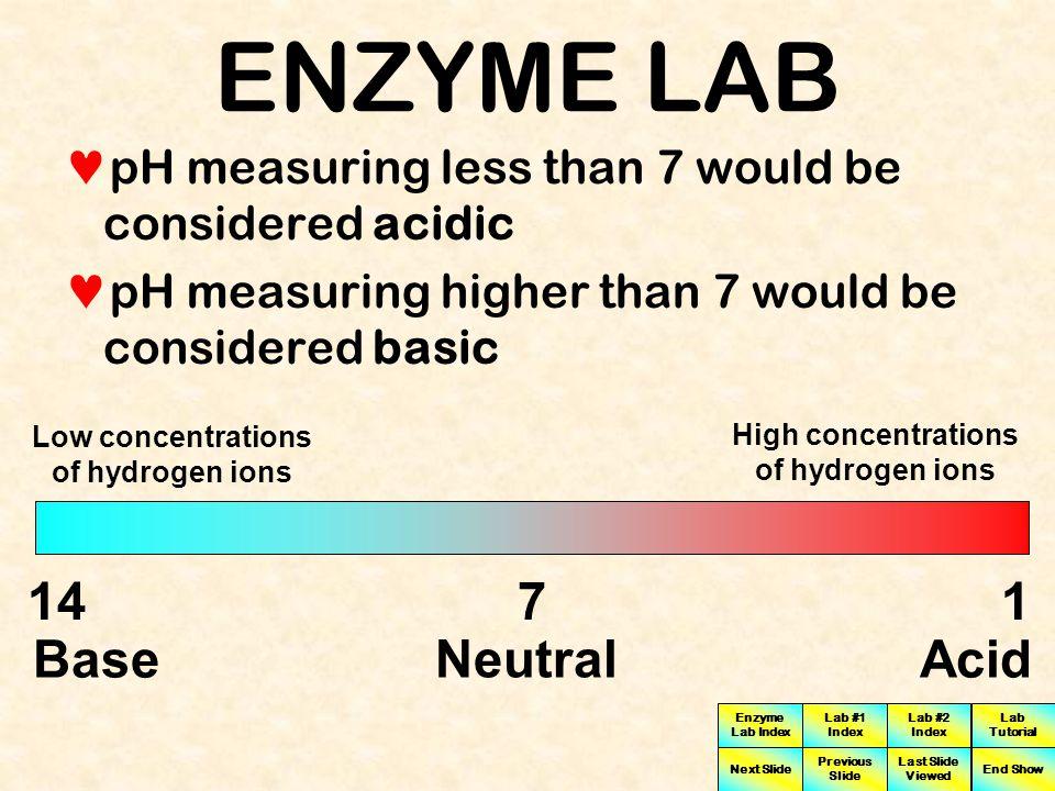 ENZYME LAB 14 7 1 Base Neutral Acid