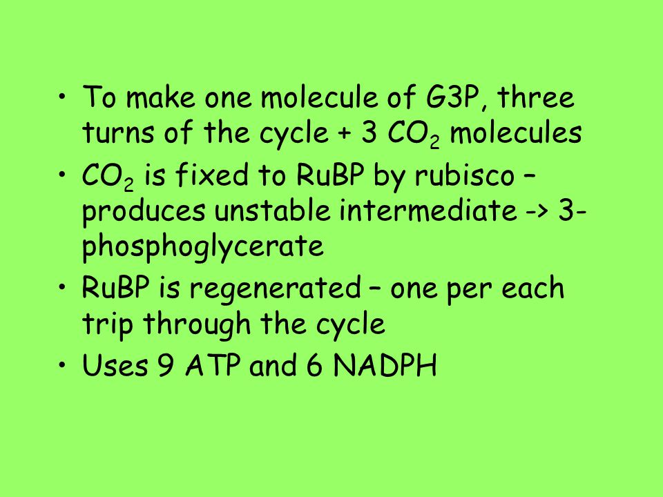 To make one molecule of G3P, three turns of the cycle + 3 CO2 molecules