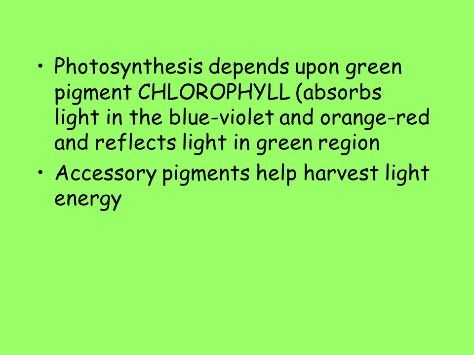 Photosynthesis depends upon green pigment CHLOROPHYLL (absorbs light in the blue-violet and orange-red and reflects light in green region