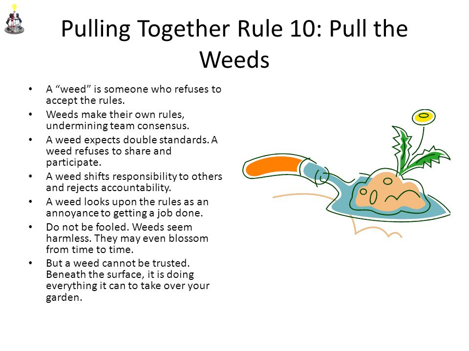 Pulling Together Rule 10: Pull the Weeds