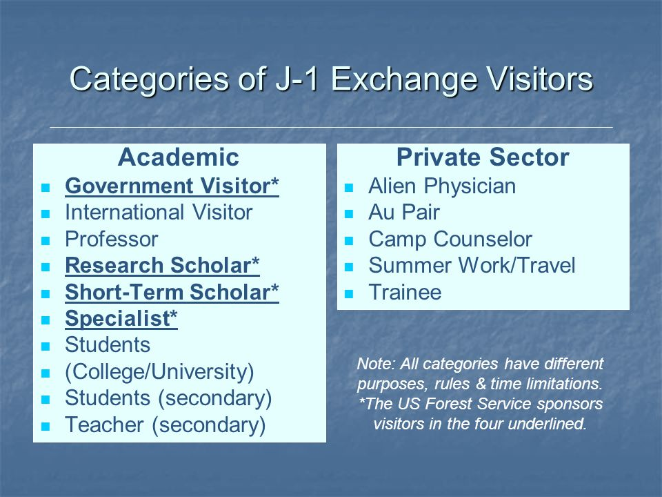 Categories of J-1 Exchange Visitors