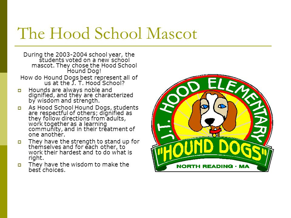 How do Hound Dogs best represent all of us at the J. T. Hood School