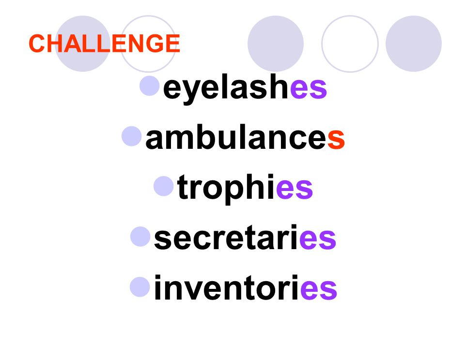 eyelashes ambulances trophies secretaries inventories