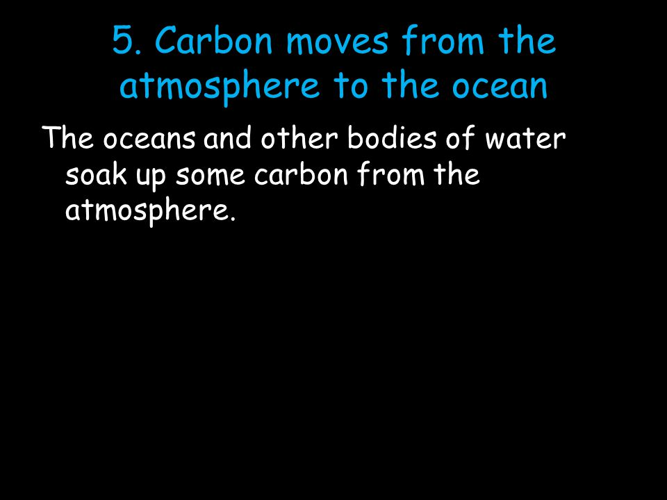 5. Carbon moves from the atmosphere to the ocean