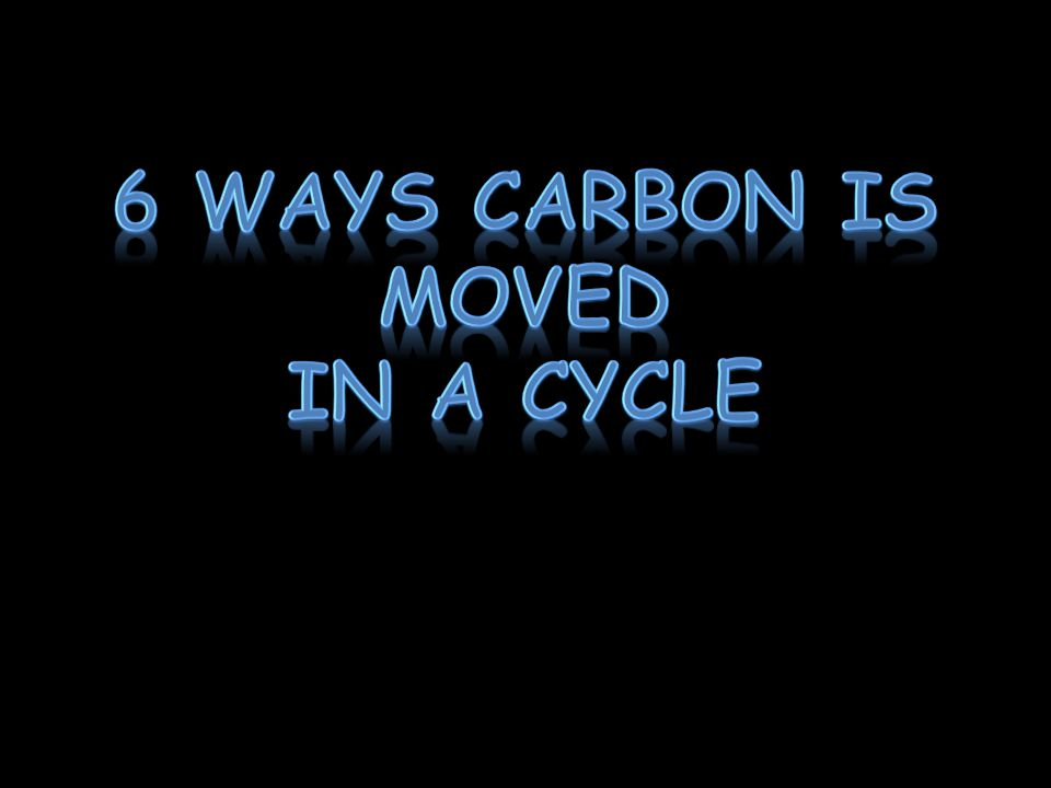 6 Ways Carbon is moved In a cycle