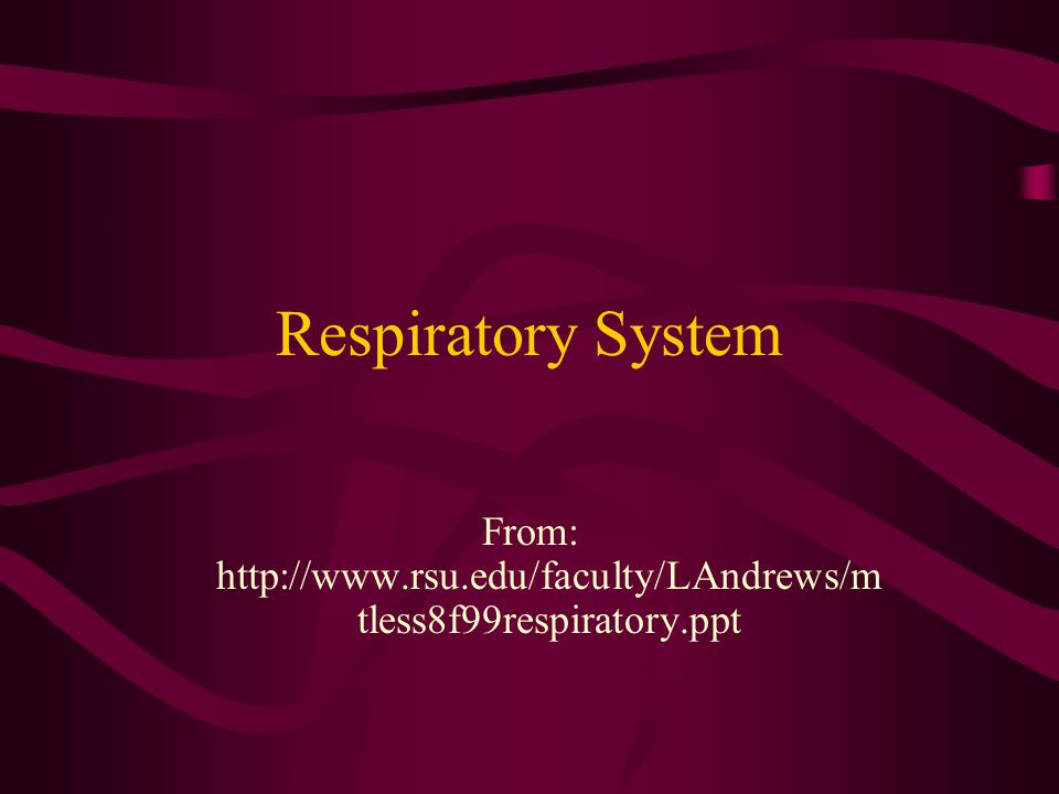 From: http://www.rsu.edu/faculty/LAndrews/mtless8f99respiratory.ppt