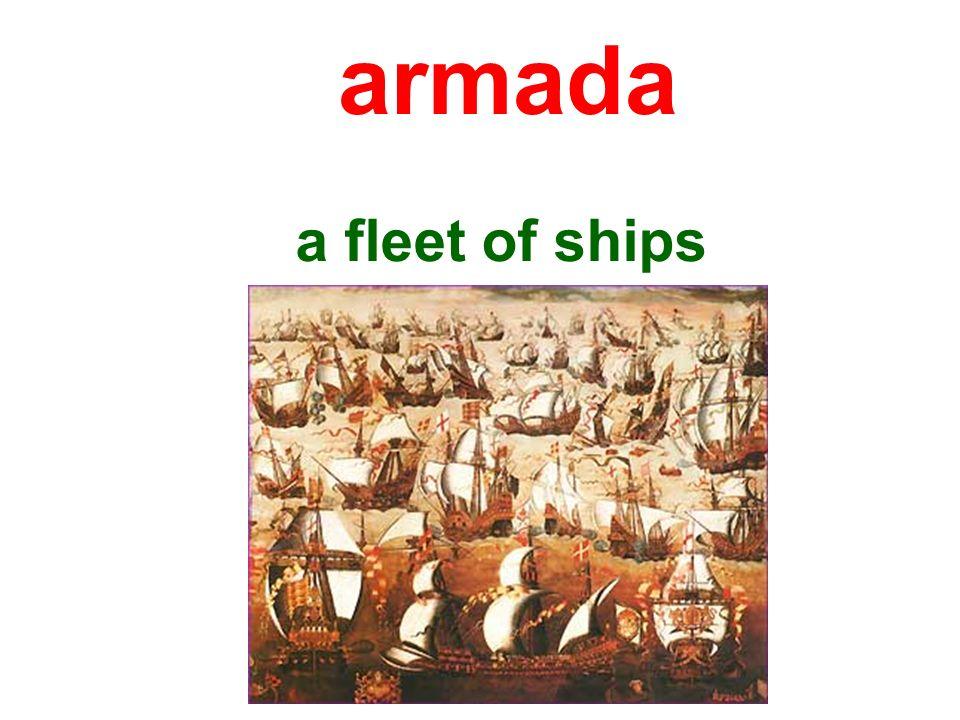 armada a fleet of ships