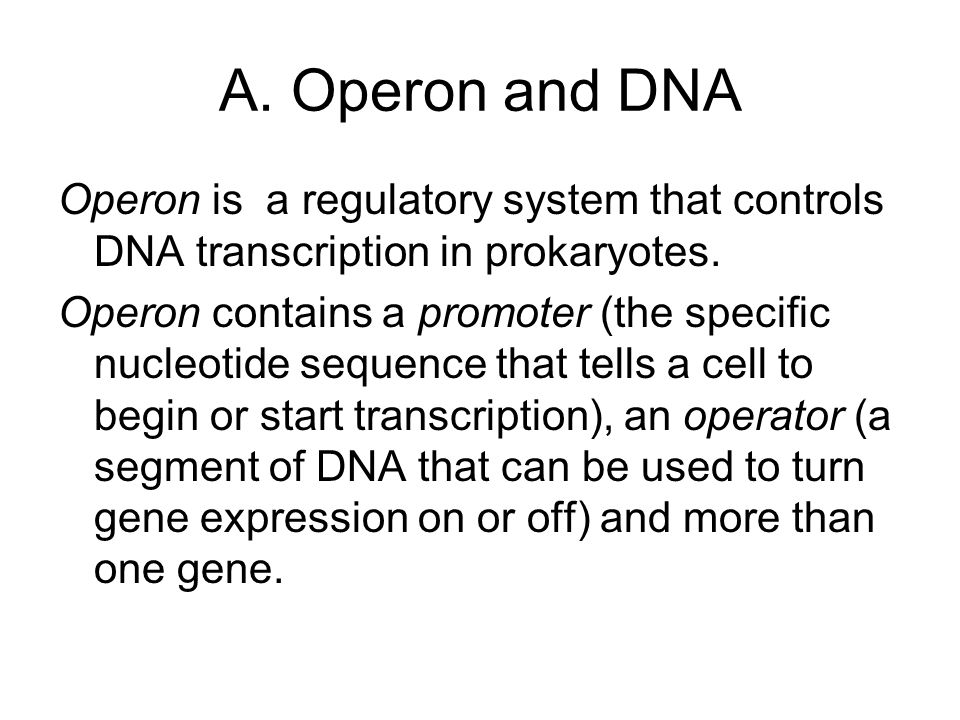 A. Operon and DNA Operon is a regulatory system that controls DNA transcription in prokaryotes.