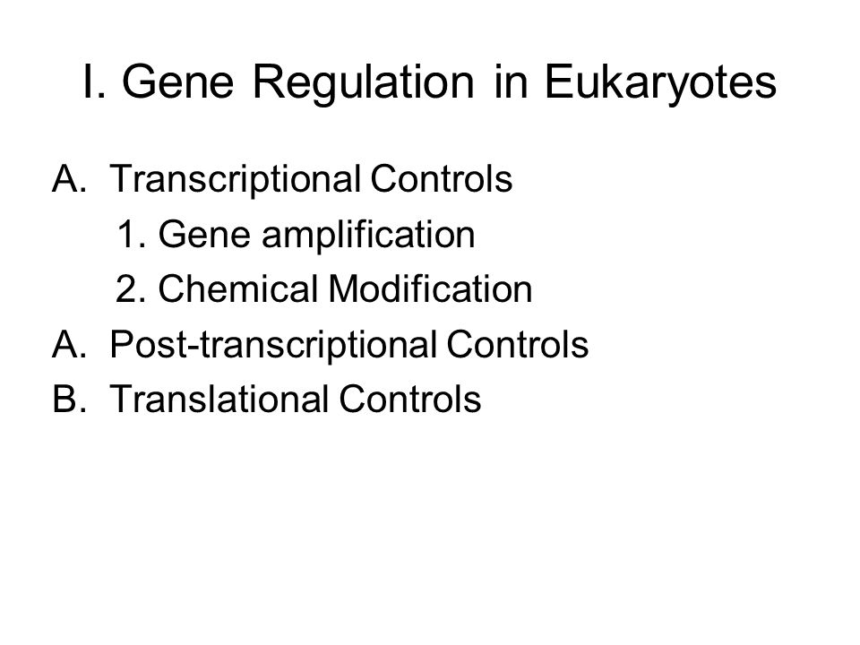 I. Gene Regulation in Eukaryotes
