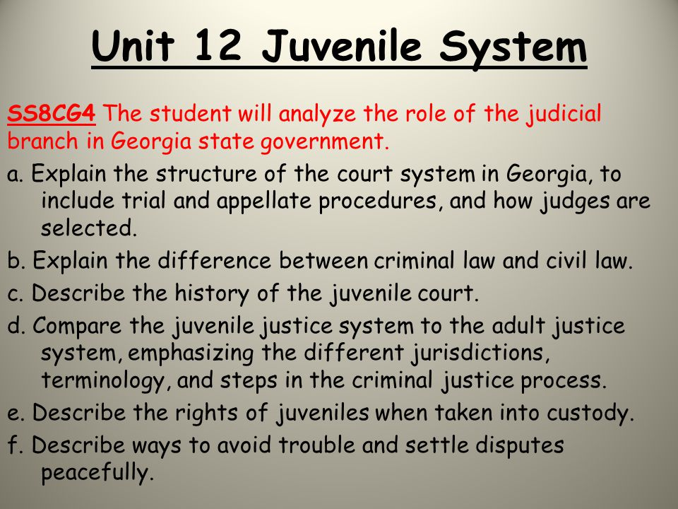 Unit 12 Juvenile System SS8CG4 The student will analyze the role of the judicial branch in Georgia state government.